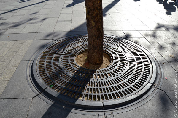 Клумбы для деревьев в Париже