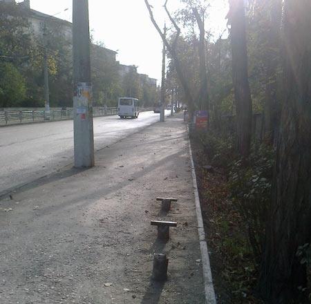 Пни от старых скамеек на ул. Гоголя