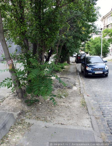 Ремонт ул. Шмидта возле кинотеатра «Дружба» (18)