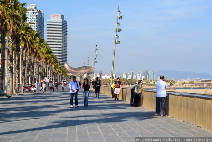 Деградация Севастополя → Вокруг света → Пляжная инфраструктура Барселоны | Деградация Севастополя